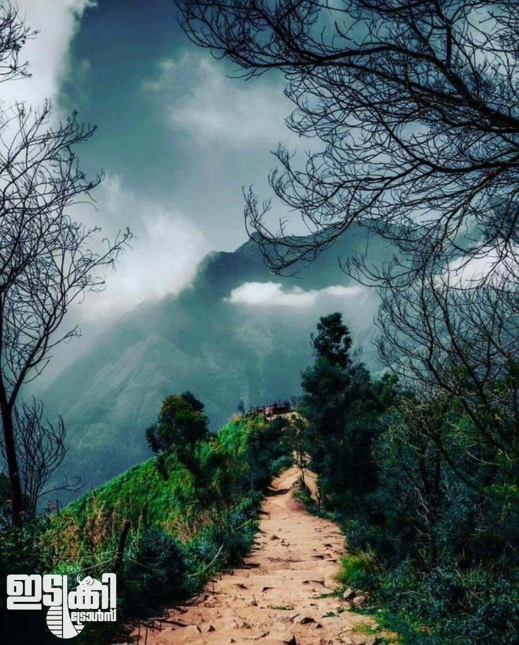 Subin PK (@pksubin) Cover Image