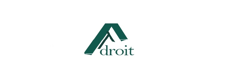 Adroit Accounting & Tax Consultancy (@adroitatc) Cover Image