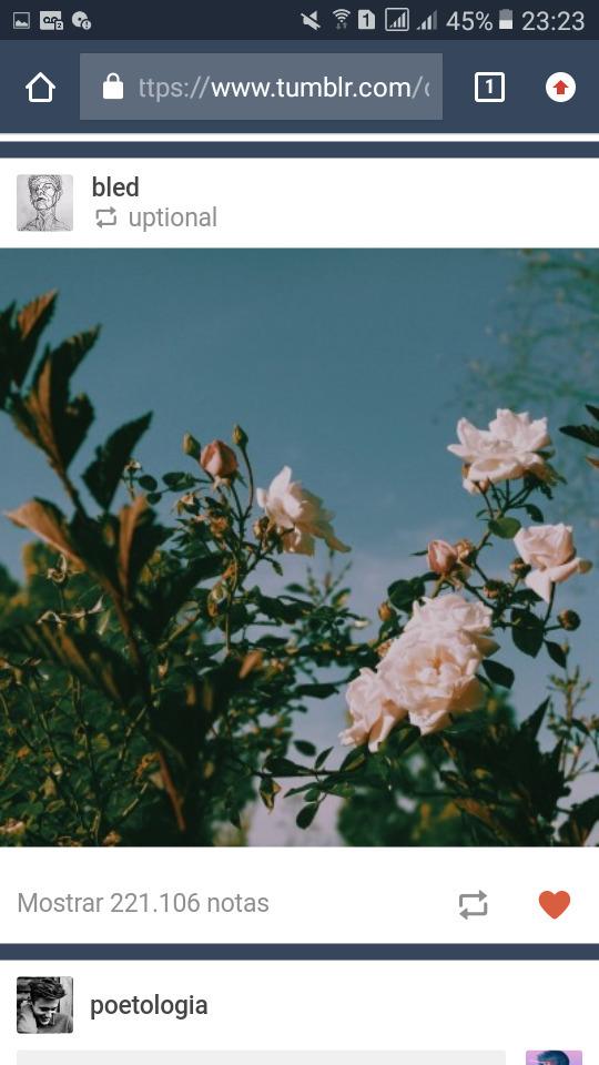 Gab 🌈 (@phobiaparadise) Cover Image