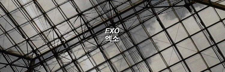 bella ♡ exo (@exoplxnet) Cover Image