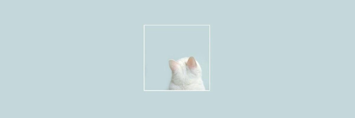 ` (@woshnu) Cover Image
