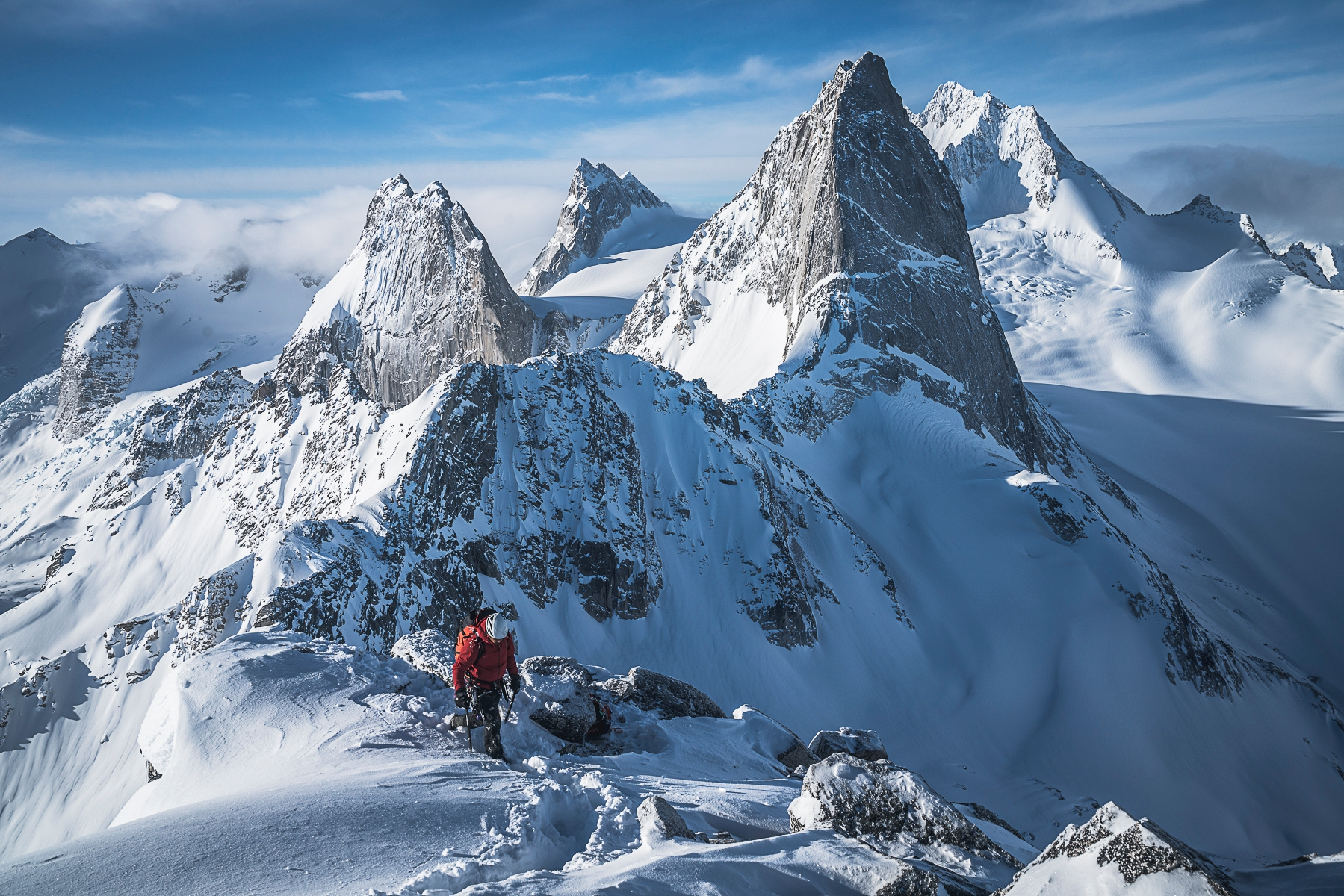 Mikey Schaefer (@mikeylikesrocks) Cover Image