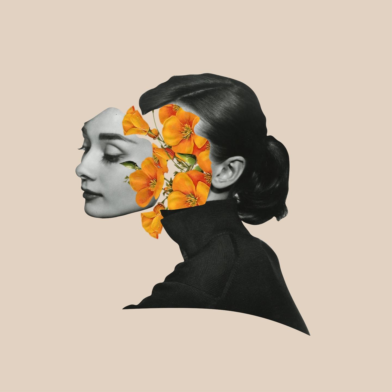 Amy E. Ridolfi (@amyridolfi) Cover Image