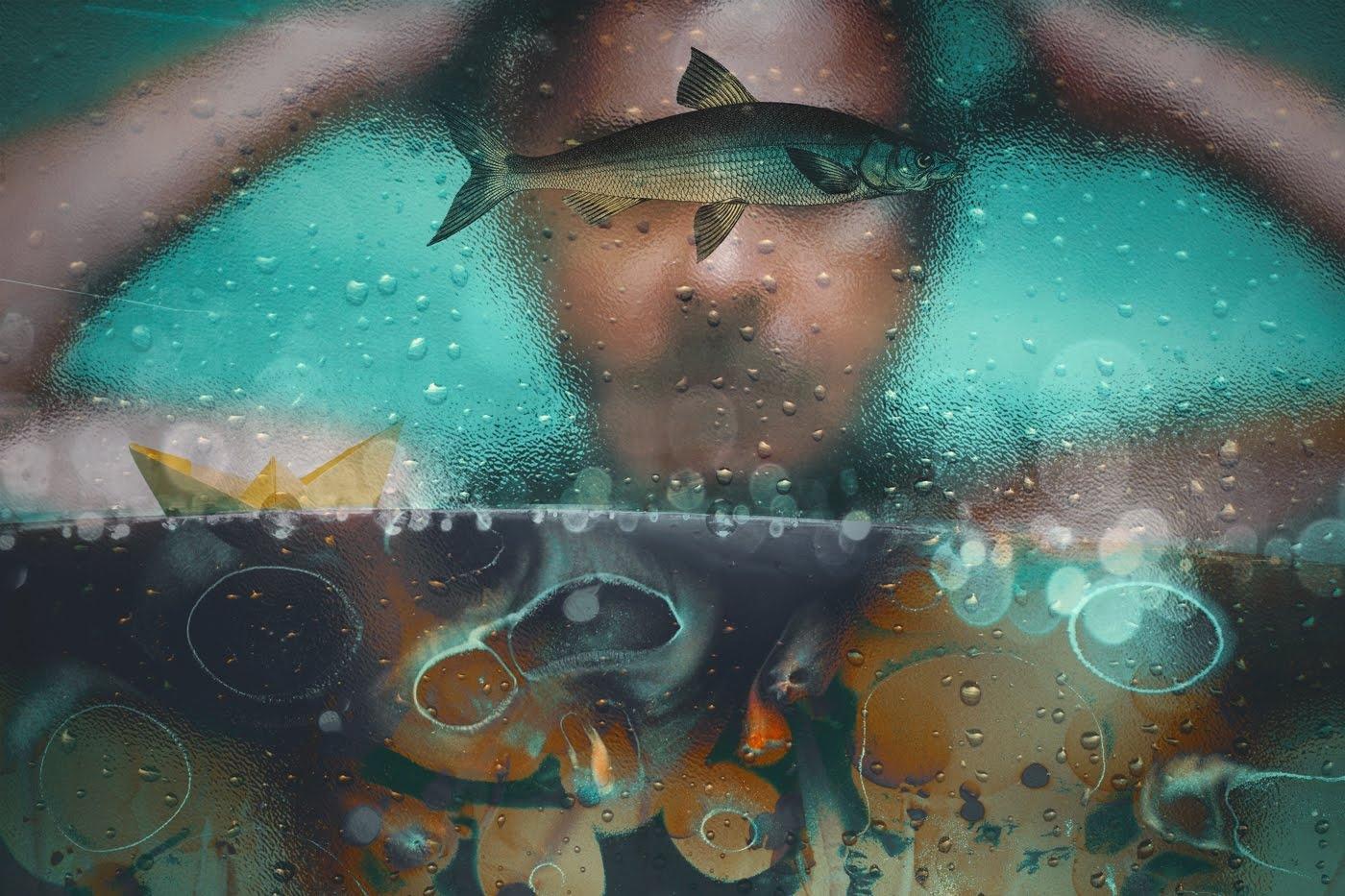 Eduardo Fujii (@sea-otter) Cover Image