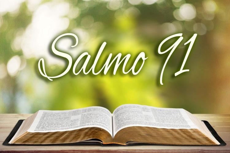 Salmo  (@salmo91) Cover Image