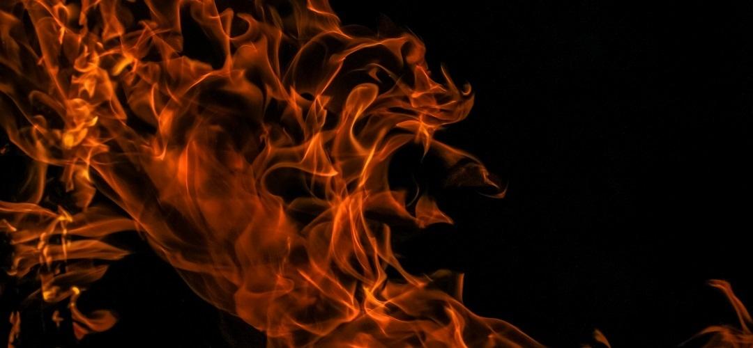 Fire Shop (@fireshop) Cover Image