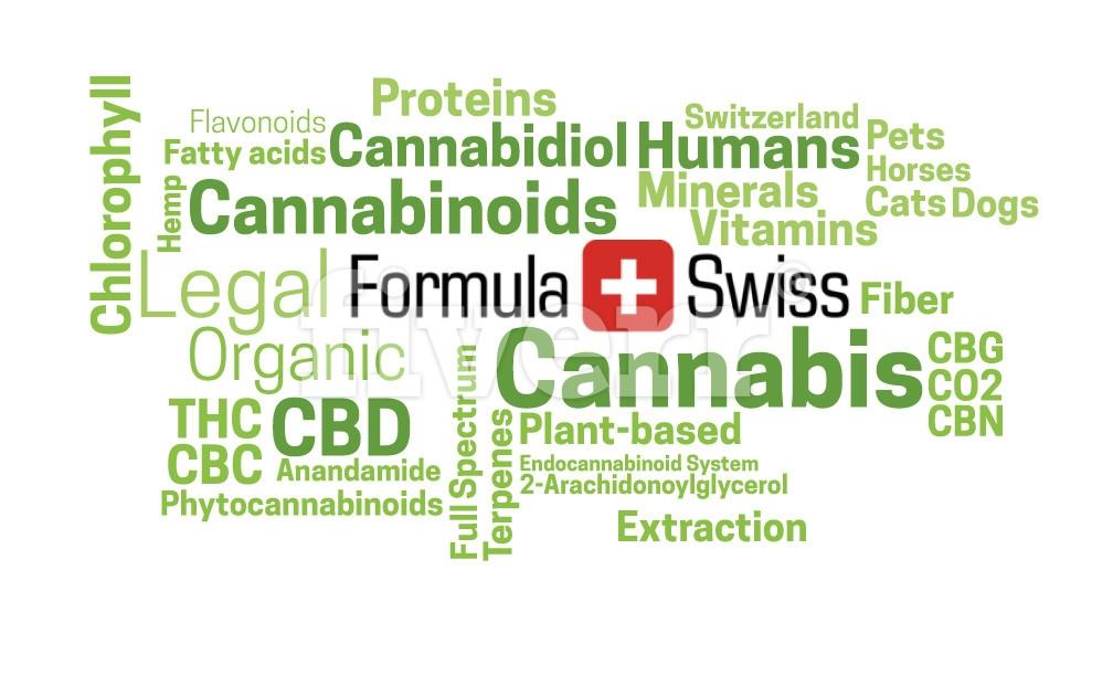 Formula Swiss AG (@formulaswissdotcom) Cover Image