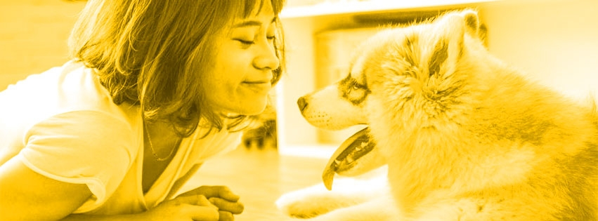 Mister Pet Online (@misterpetonline28) Cover Image