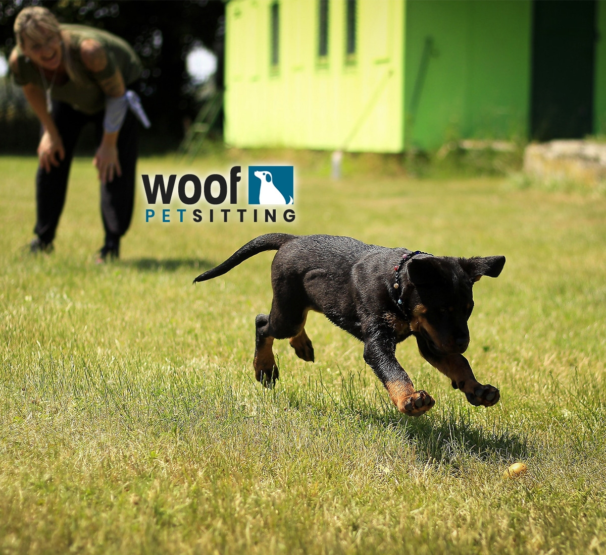 Woof Pet Sitting (@woofpetsitting) Cover Image