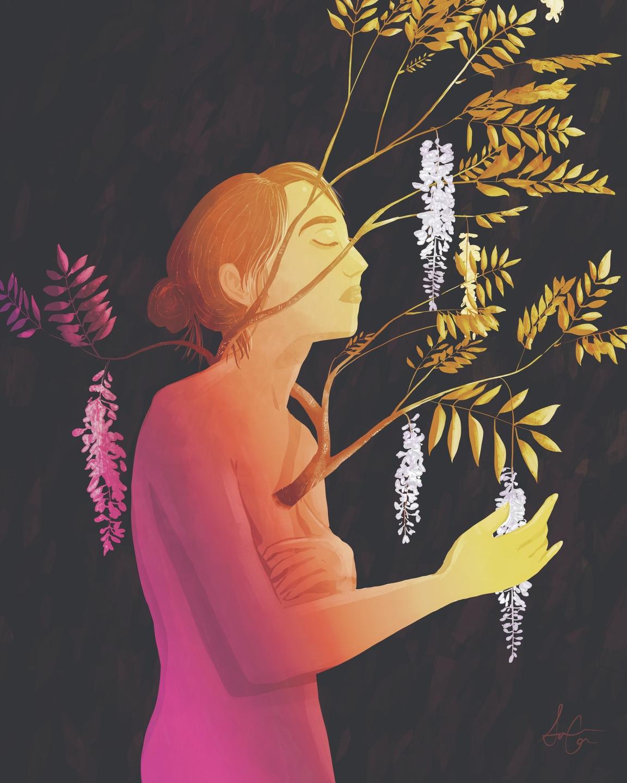 Sophie Calhoun (@shapka) Cover Image