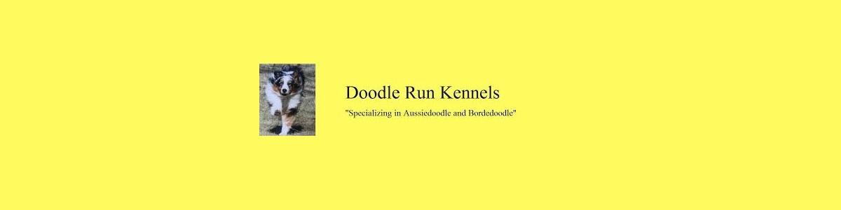 Doodle Run Kennels (@doodlerunkennels) Cover Image