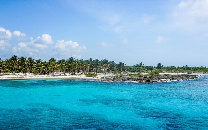 Koox Diving Cozumel (@kooxdivingcozumel) Cover Image