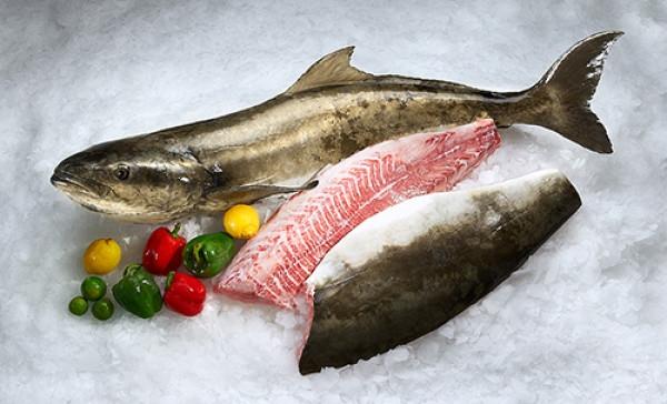 Fresh Fish Basket (@freshfishbasket) Cover Image