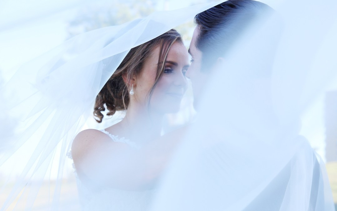 Catherine Gross (@cjgphotos) Cover Image