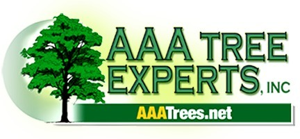 AAA Tree Experts (@aaatrees) Cover Image