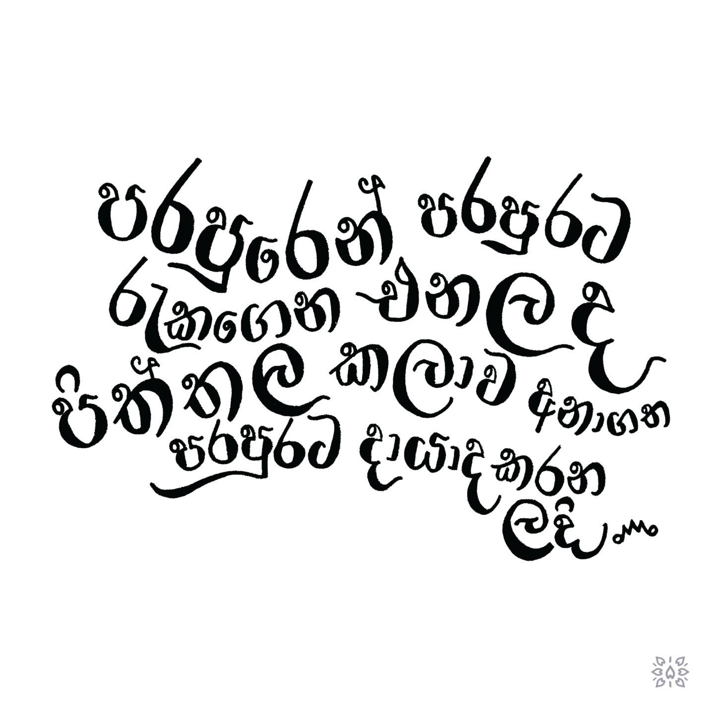 Chamodi Waidyathilaka (@chamodiwaidya) Cover Image