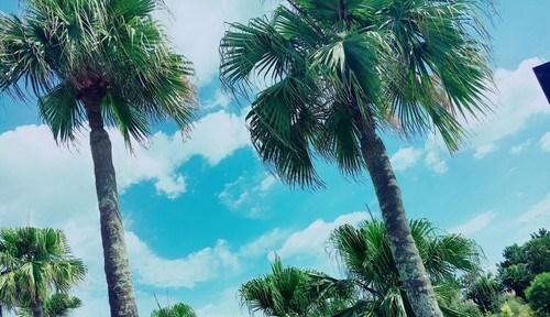 井寄準(仮) (@iyorin5846) Cover Image