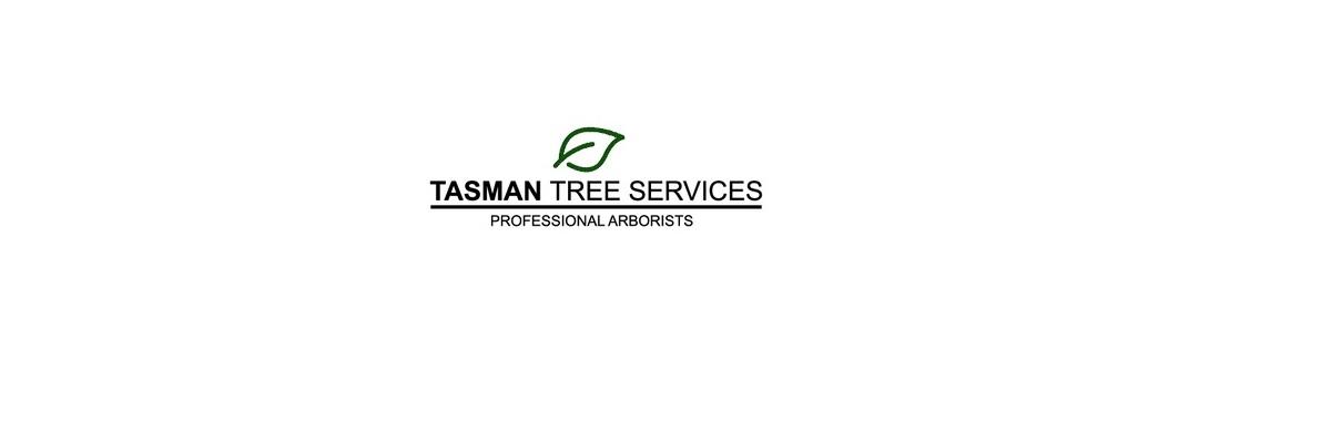 Tasman Tree Services (@tasmantreeservices) Cover Image