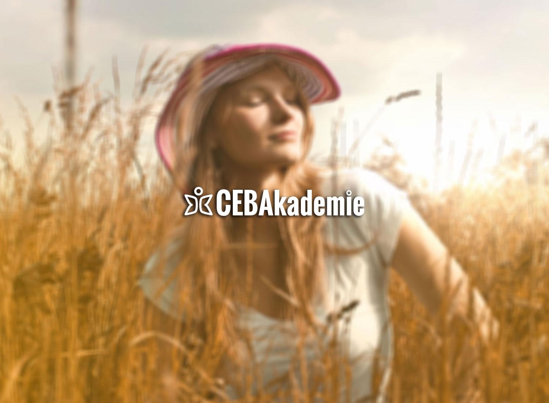 CEB Akademie (@cebakademie) Cover Image