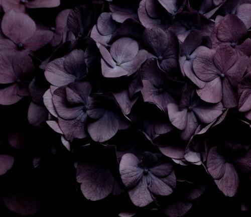 (@lellgerie) Cover Image