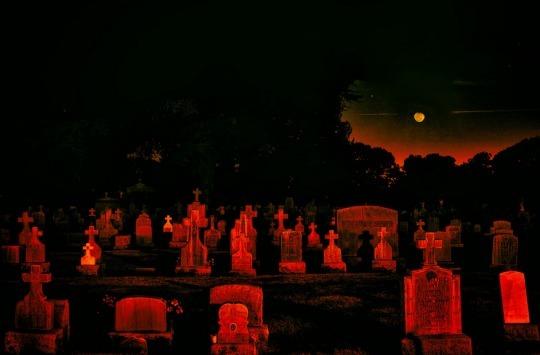 Lil Stabby (@graveyardbrat) Cover Image