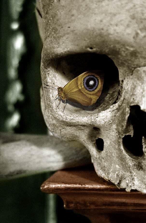 dungeonnerd (@dungeonnerd) Cover Image