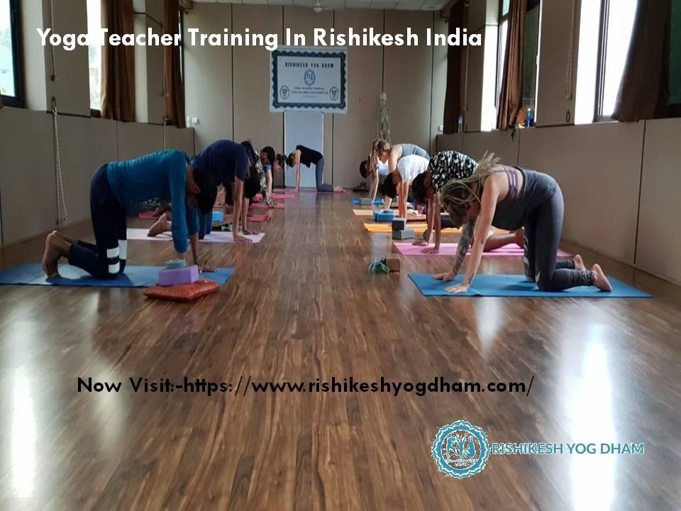 Rishikesh Yog D (@rishikeshyogdham) Cover Image