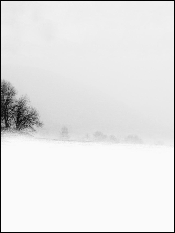 @ellebresson Cover Image