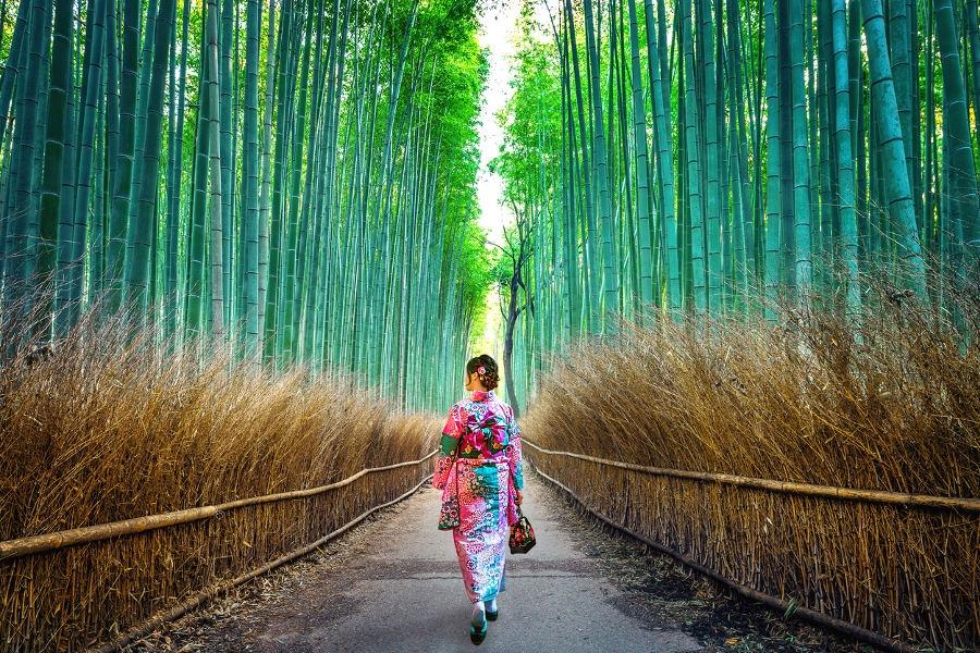 Japon Alternat (@japonalternativo) Cover Image