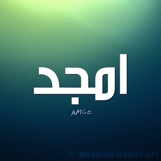 @amgad_boge Cover Image