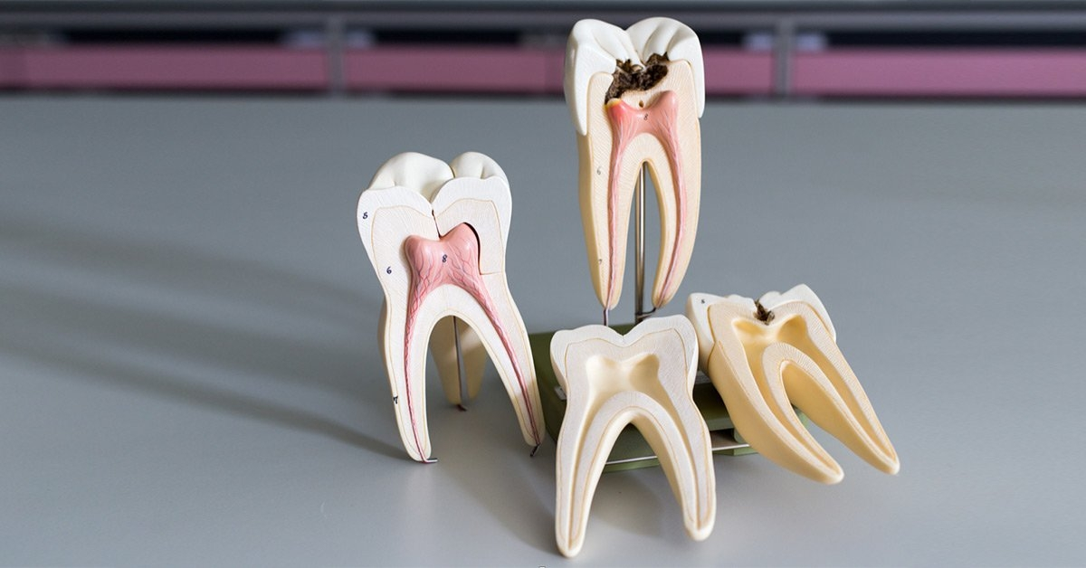 Sparkle Dental (@sparkledental) Cover Image