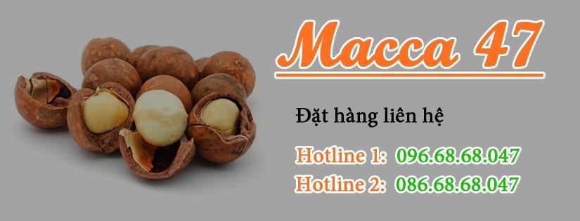 macca47com (@macca47com) Cover Image
