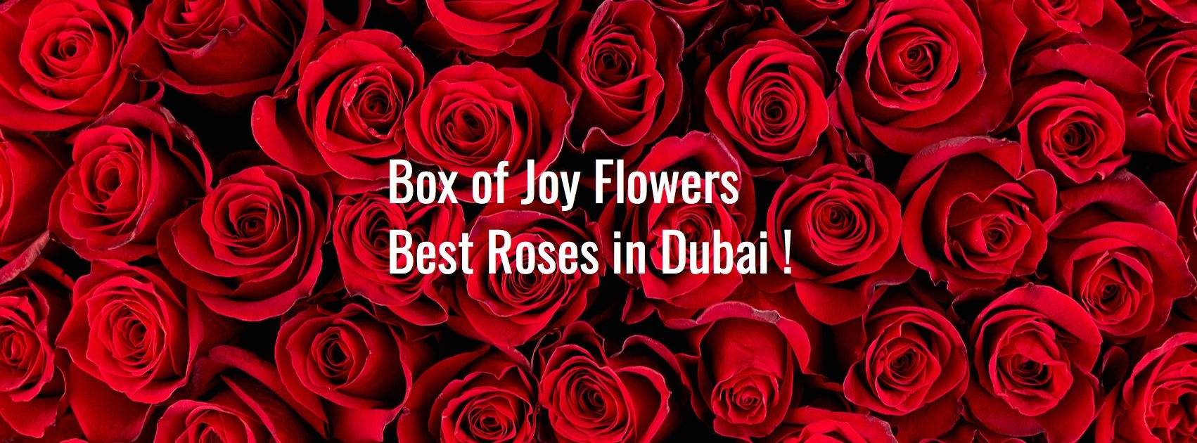 Box of Joy Flowers  (@boxofjoyflowers) Cover Image