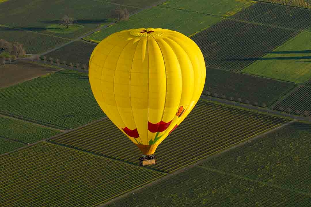 Napa Valley Balloons, Inc (@napavalleyballoons) Cover Image