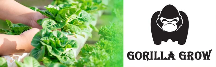 Guerrilla Grow Hydroponics (@guerrillagrowhydroponics) Cover Image