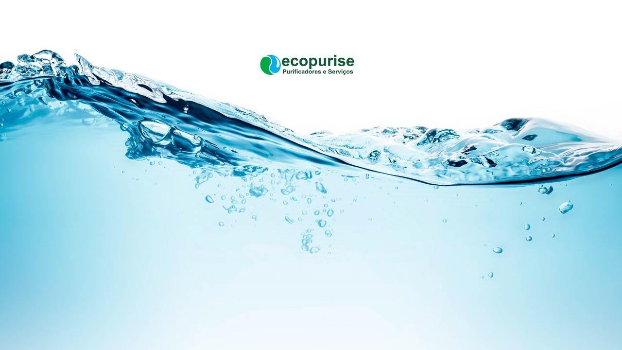 Ecopurise (@ecopurise) Cover Image