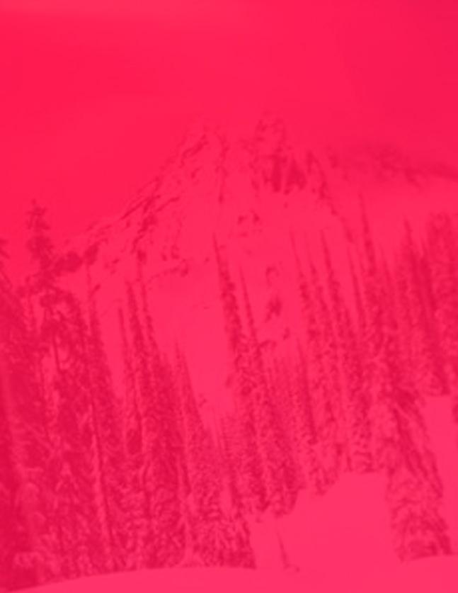 Dominic Coto (@cotodigital) Cover Image