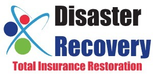 Disaster Recovery (@disasterrecovery01) Cover Image