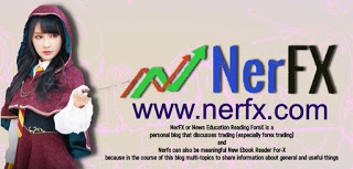 NerFX (@nerfxcom) Cover Image