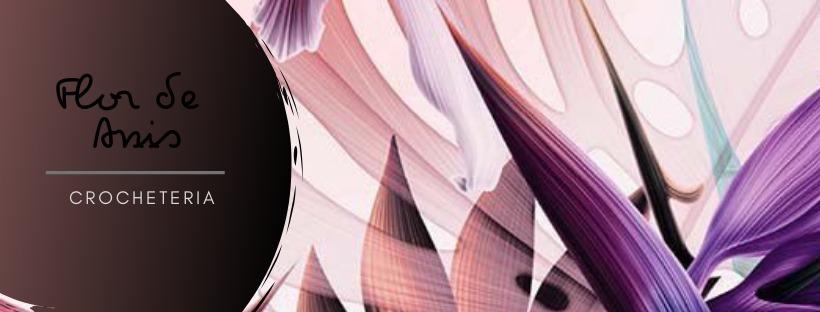 Flor de Anis (@anis-crocheteria) Cover Image
