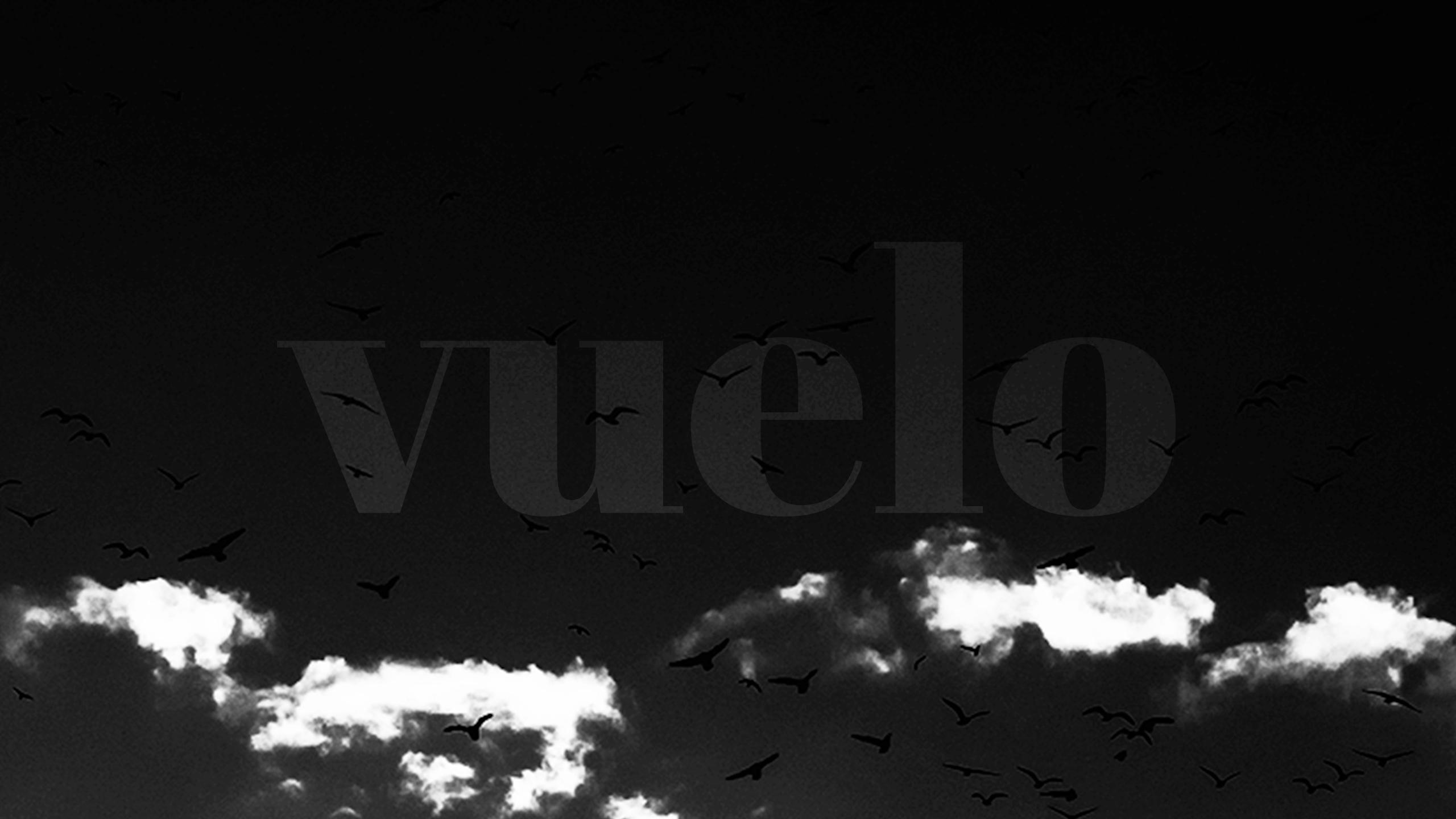 vuelo (@vuelo) Cover Image
