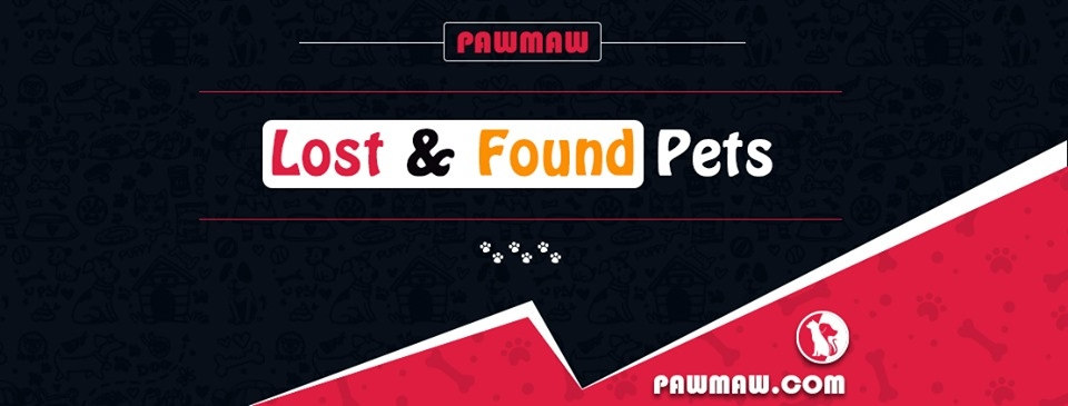 PawMaw (@pawmaw) Cover Image