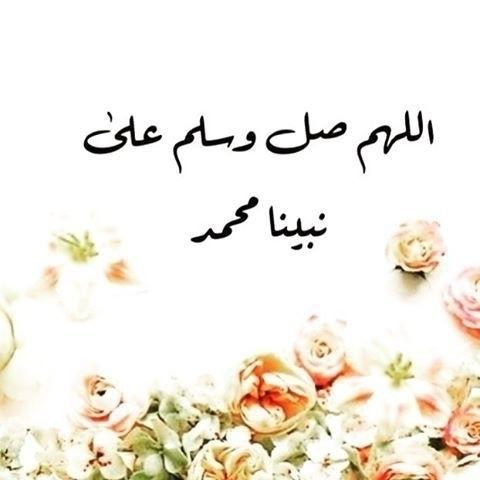 (@ayatulip) Cover Image