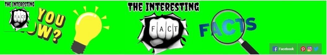 The Interesting Facts  (@theinterestinfacts) Cover Image