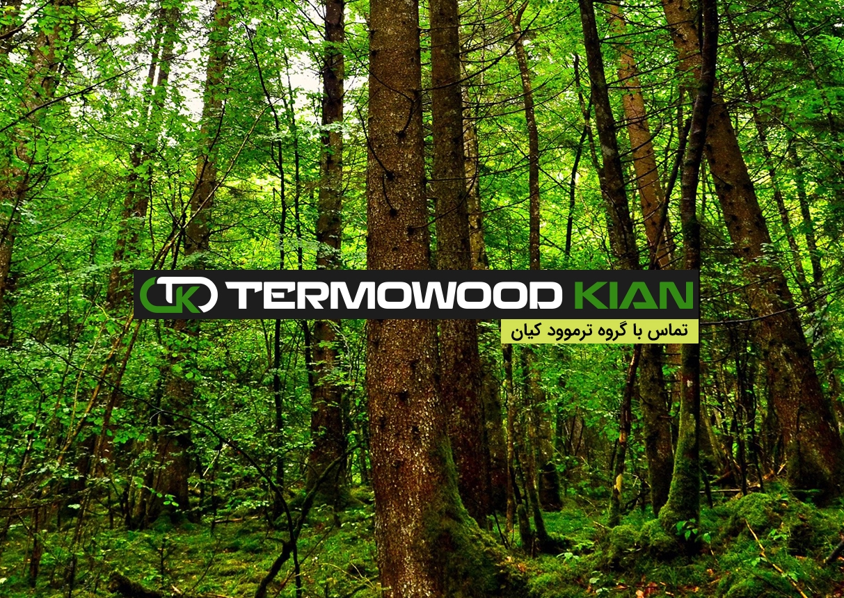 ترموود  (@termowood) Cover Image