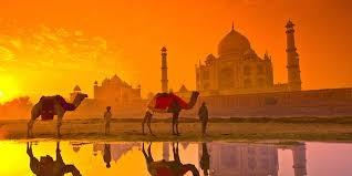 Usmani Ta (@usmanitaj) Cover Image