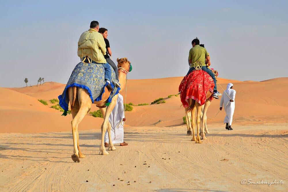 Desert Safari Dubai (@azibro) Cover Image