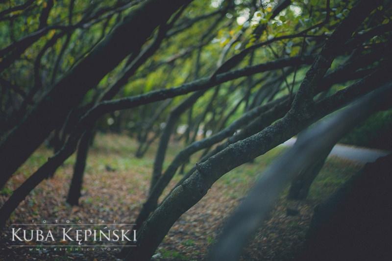 Kuba K (@kubakepinski) Cover Image
