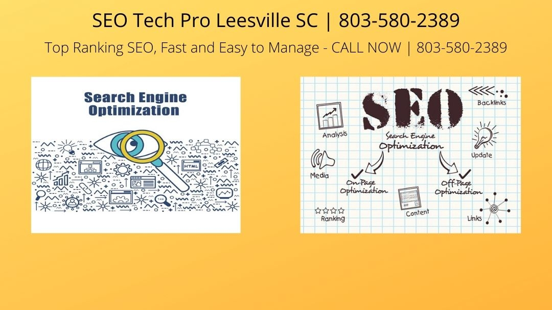 SEO Tech Pro Leesville SC (@lesvieseo) Cover Image