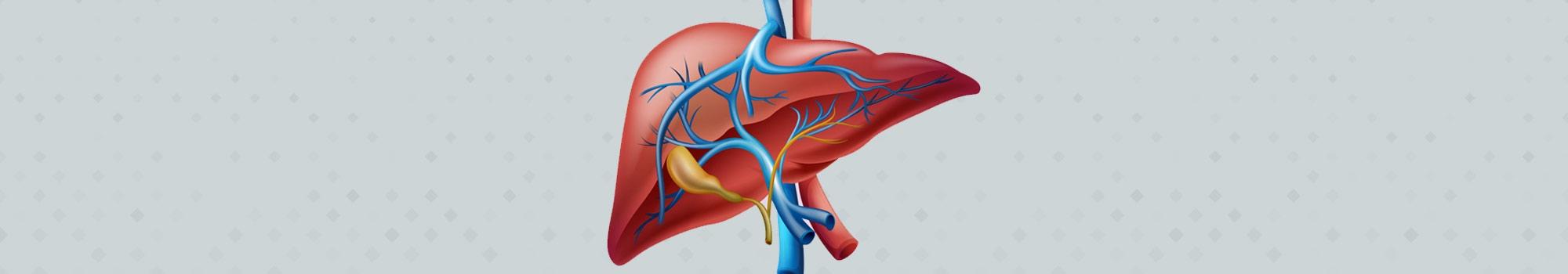 Liver transplant in Delhi (@liverhelplineindia) Cover Image